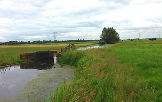Ecoscans-in-Rivierenland