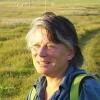 Wendy Bach-Kolling