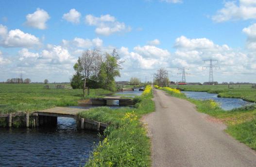 Een-polder-in-het-waterschap-Rivierenland